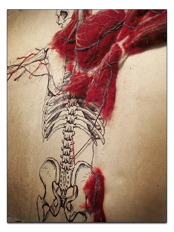Dan Beckenmeyer Cardio 2